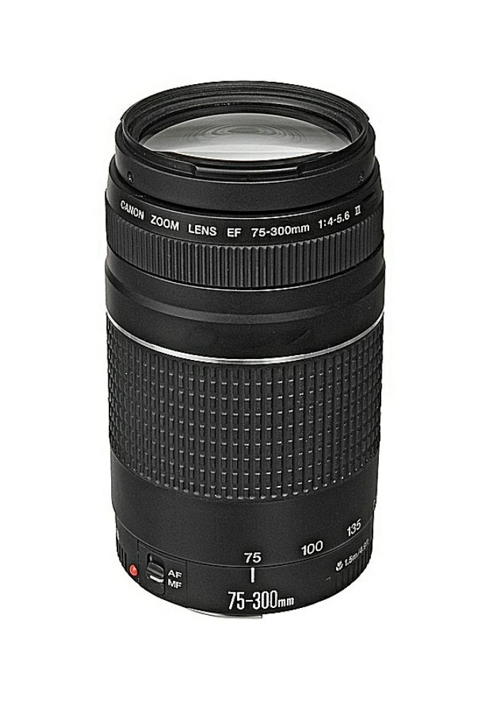 canon 75-300mm mark III lens ( only 2 day used)